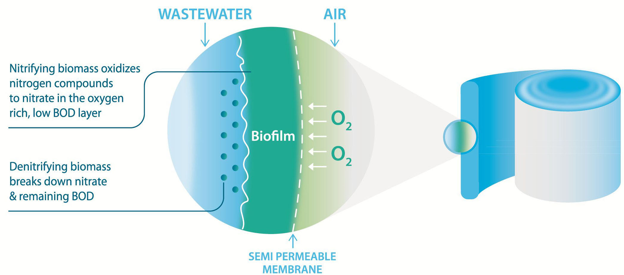 Simultaneous Nitrification and Denitrification