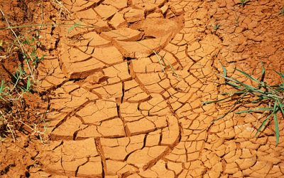 Researchers: The U.S. Insurance Industry Could Help Water Utilities Cope with Drought