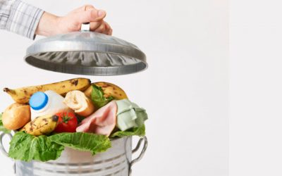 Federal Grants Support Food Waste Solutions in Connecticut