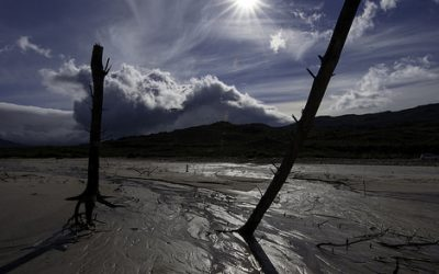 Drought Devastating South Africa