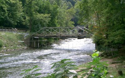 Withdrawal of Fresh Water May Reduce Aquatic Diversity