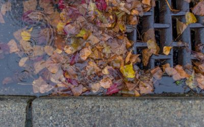 Reuse Turns Stormwater Runoff From a Problem to an Asset