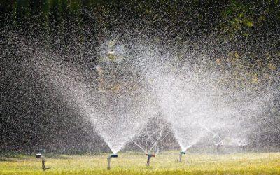 Water Conservation Backslide Worries California Officials