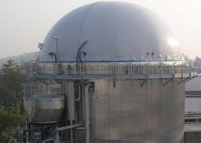 Efluentes y Conversión de Residuos en Energía para un Fabricante de Fruta Confitada