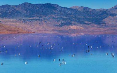 Utah's Great Salt Lake in Jeopardy