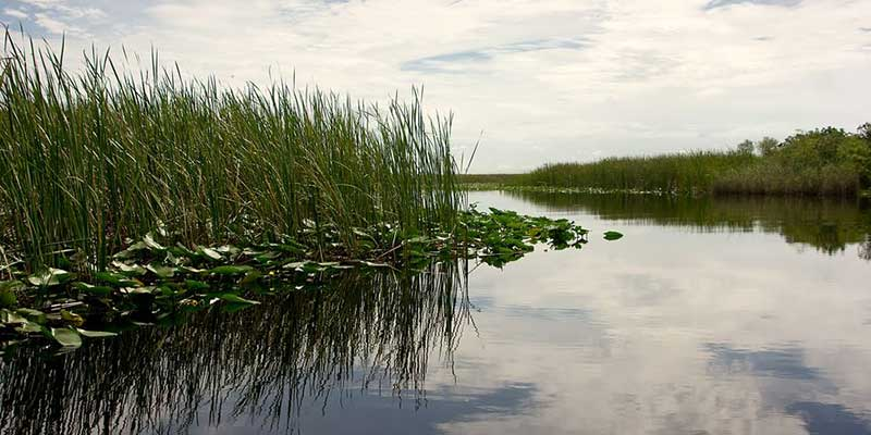 Threats to Miami's Water Supply