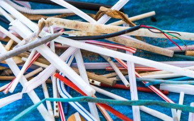 Plastic Straws and One-Use Plastics Harming the Water System