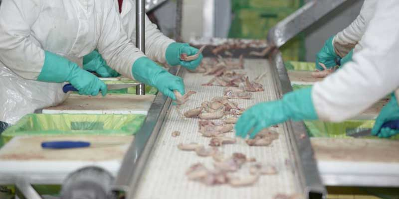 Meat Plants Exceeding Effluent Permits | Fluence