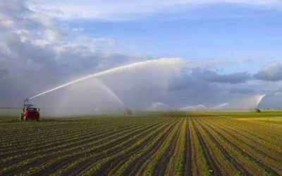 U.S. Groundwater Reserves More Limited Than Assumed