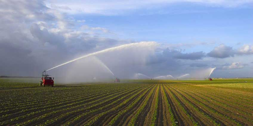 Brackish Groundwater