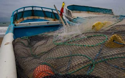 Water Issues in the Seafood Industry