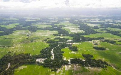 Study Identifies Arsenic Strategies for Bangladesh