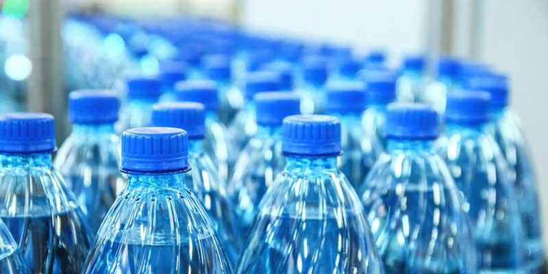 Human Ingestion of Microplastics