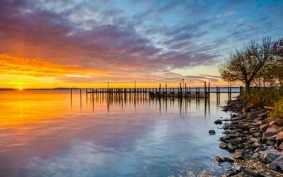 Large Dead Zone Predicted for Chesapeake Bay