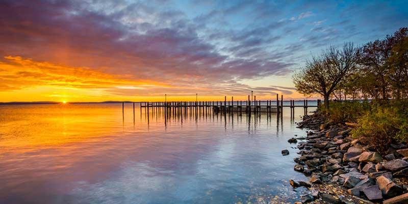 Chesapeake Bay Dead Zone