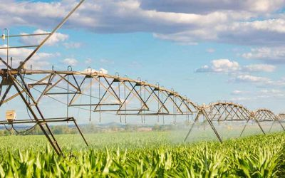 Groundwater Level and Surface Water Depletion Linked