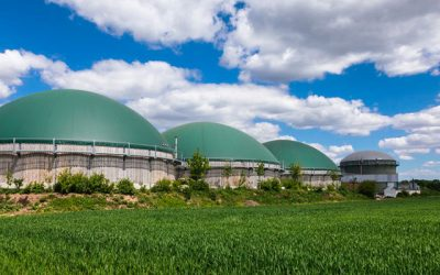 Adding Value With Anaerobic Digestion