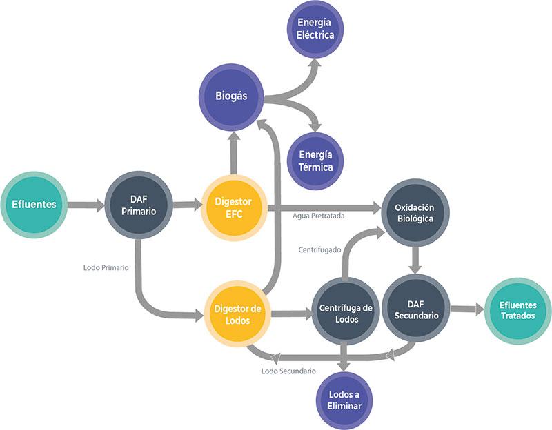Proceso de Tratamiento WtE para Efluentes de Frutas Confitadas