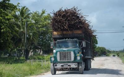 A Seca Contínua Ameaça Belize
