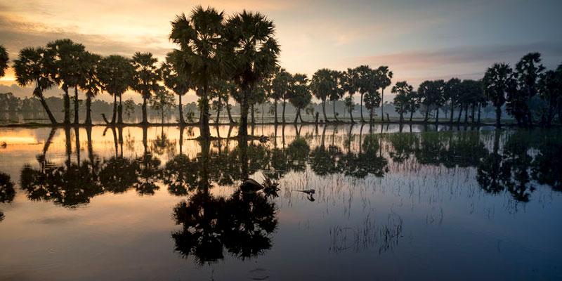 Contaminación del Agua de Vietnam