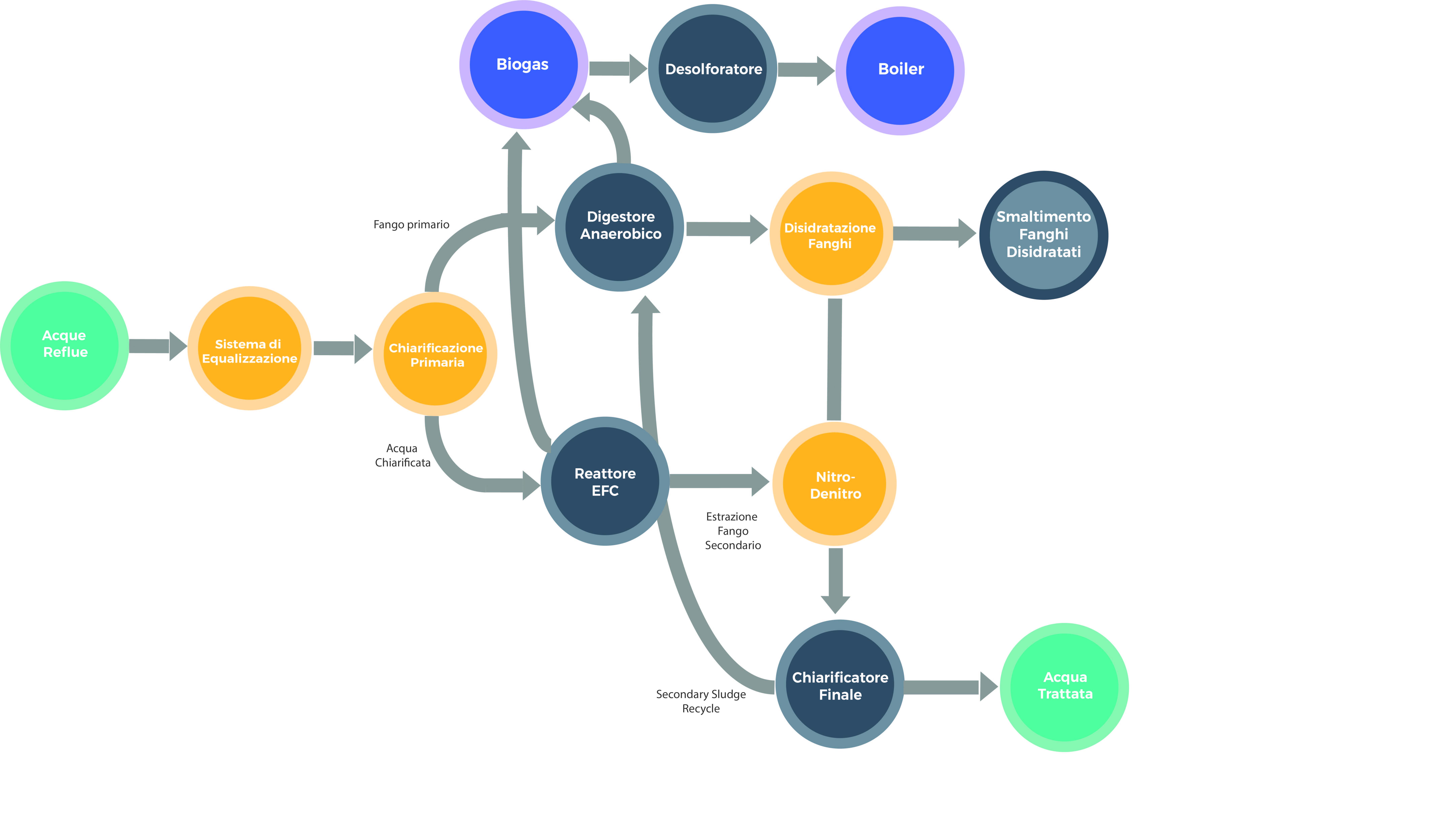 Processo di trattamento WtE per la produzione di birra