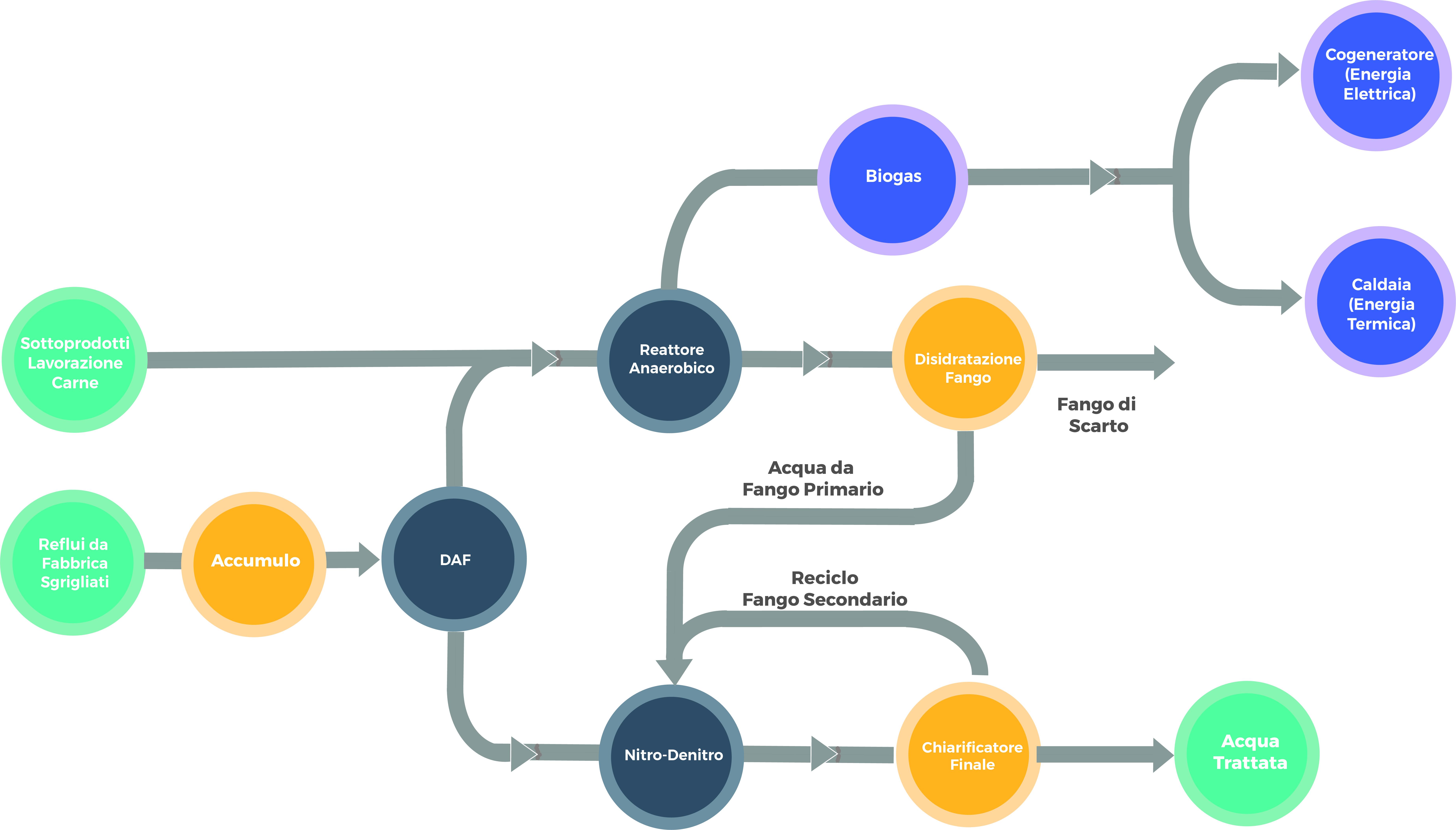 Processo di trattamento Waste-to-Energy per la lavorazione di carne e pesce