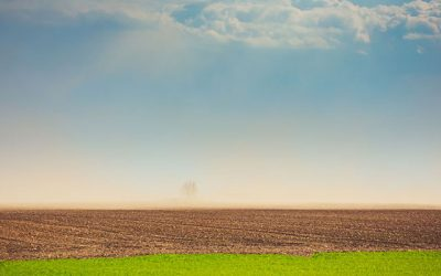 'Megadrought' Stalls Agriculture in Western US