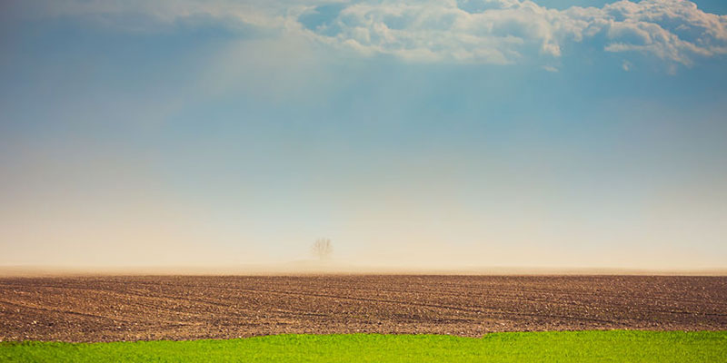 Wind Kicks Up Dust From a Dry Agricultural Field